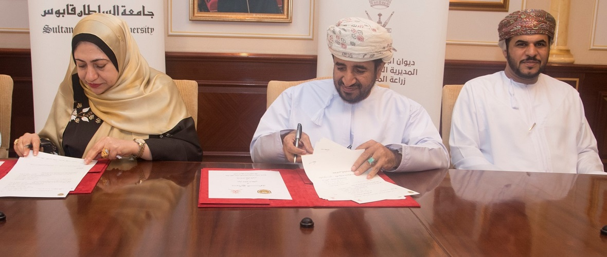 Cooperation Program to Promote Date Palm Sector in Oman