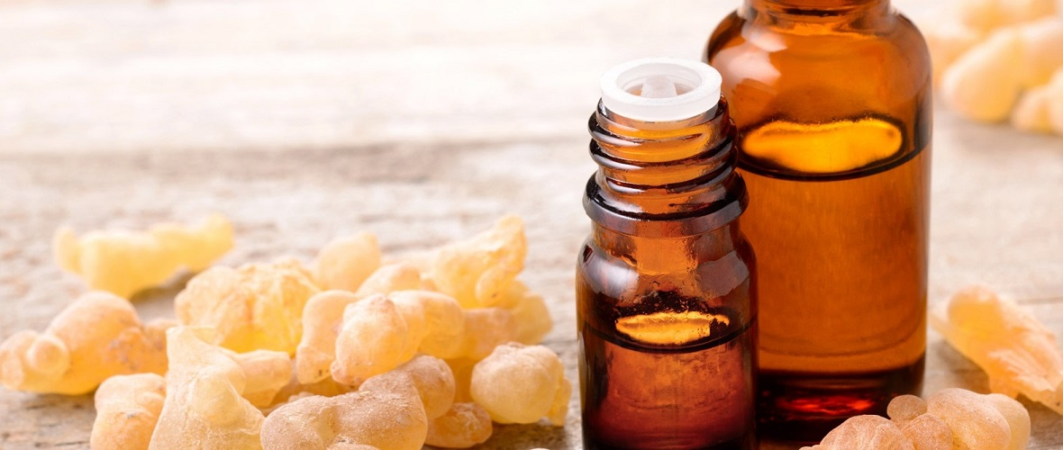 Conference on Frankincense and Medicinal Plants in October